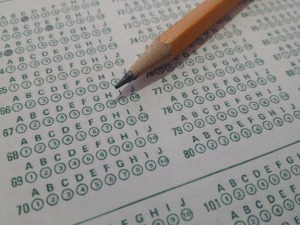 testy-predyspozycji-zawody-jakie-wybrac-praca doradca zawodowy